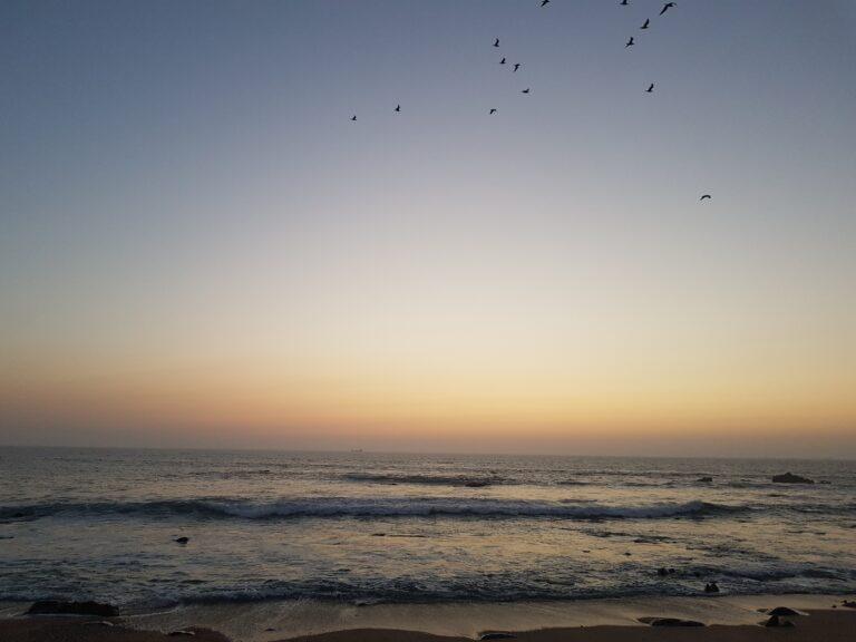 Surfreise durch Portugal
