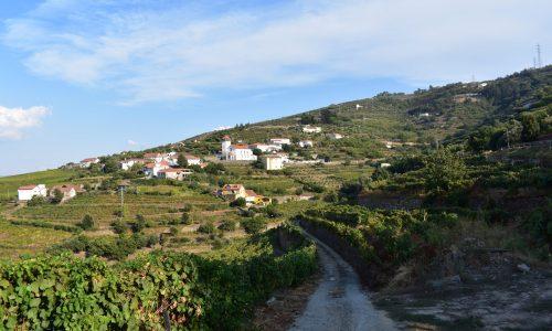 Das schöne Duorotal mit den vielen Weinbauern